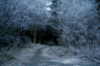 Vakkert og vinterlig... Foto:Karl Inge