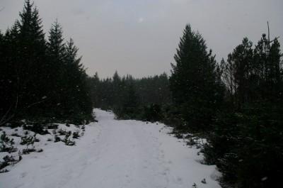 Jaguu begynte det ikke å snø også... Foto:KIS